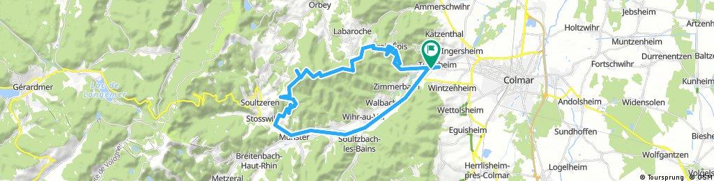 12-6-2017 Turckheim-Alsace-Collet du Linge.