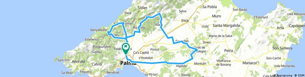 Valldemosa, Orient, Llorito