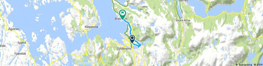 Bergen: Fjellveien