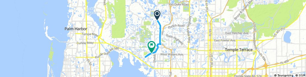 ride from Odessa to Tampa