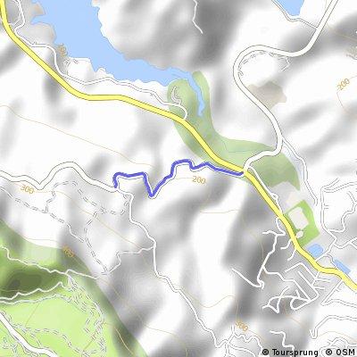 Wildcat Canyon (Camino Pablo to El Toyonal)