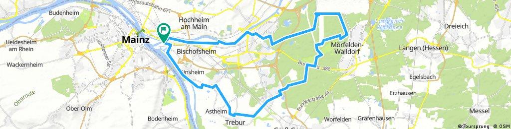 Gustavsburg - Flughafen - Mönchbruch