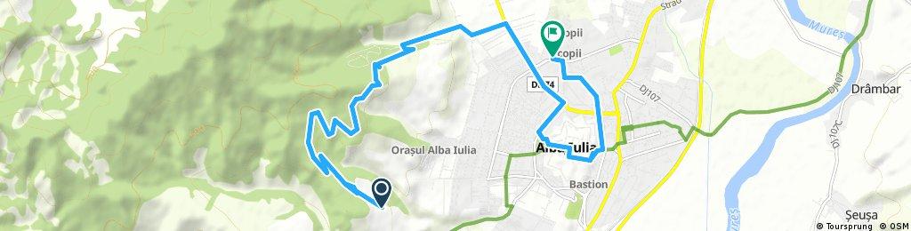 ride through Alba Iulia city