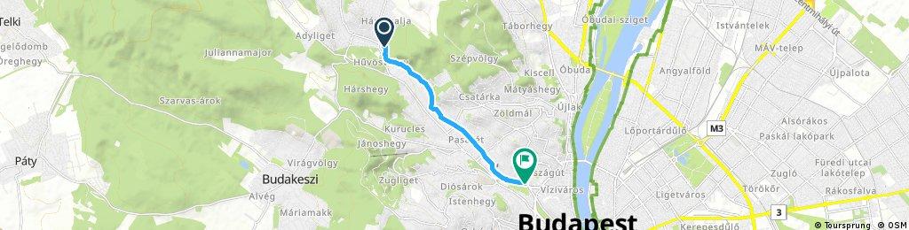 Quick ride through Budapest