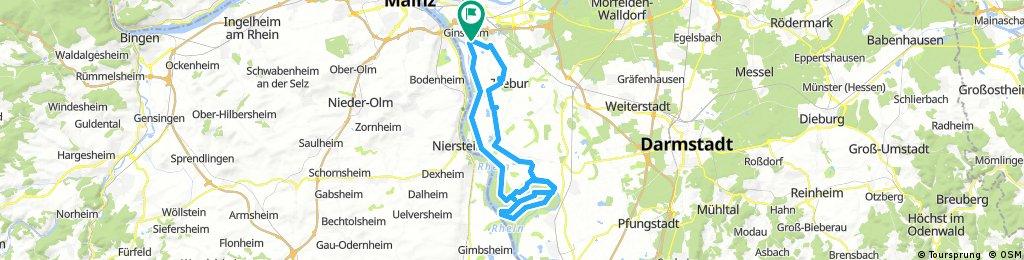 Ginsheim - Trebur - Kühkopf