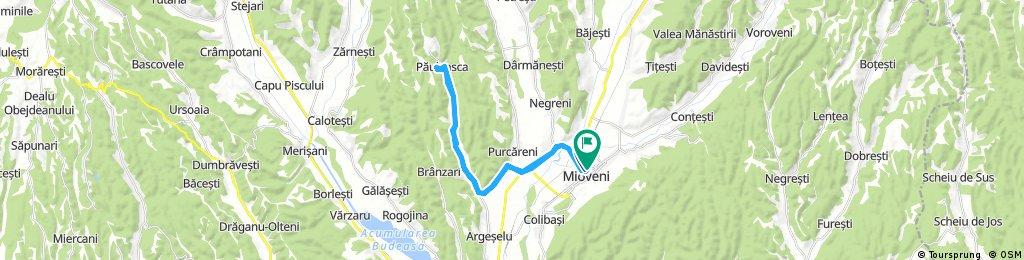 Long ride through Mioveni