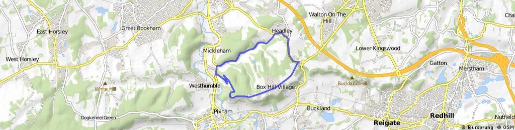 Box Hill loop