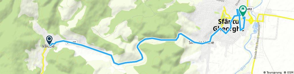 ride from (null) to Sfântu Gheorghe
