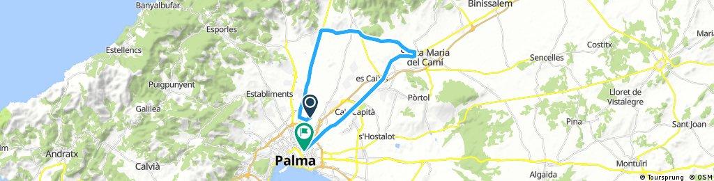 Son Castelló-Santa María-Palma