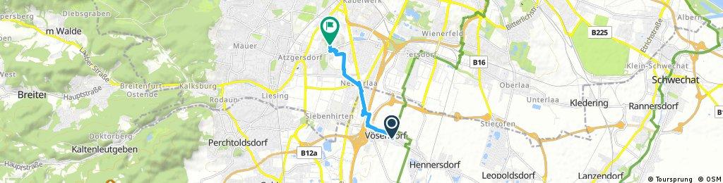 Schnelle Radrunde von Vösendorf nach Wien