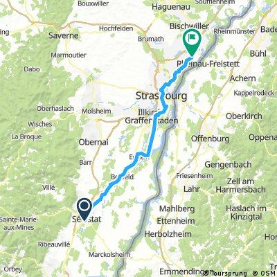 Day 52: Selestat to Gambsheim