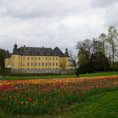 Von Düsseldorf zu Kunst und Kohle im rheinischen Braunkohlerevier und nach Schloss Dyck