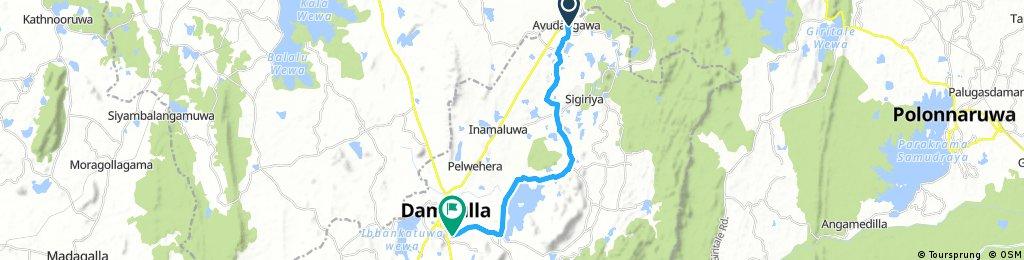 Dambulla Day2