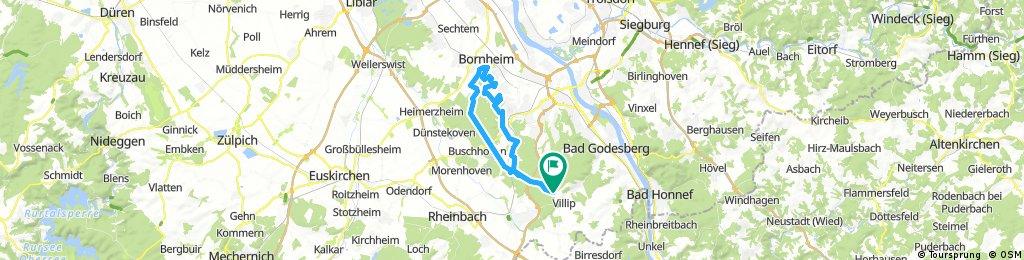 Bornheim 39,3 - 260