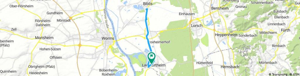 Radrunde durch Lampertheim