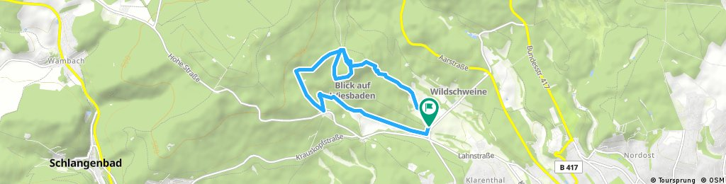 Schläferskopf , Flowtrail Gravity Trail