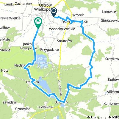 Ostrów Wielkopolski - pętla południowa