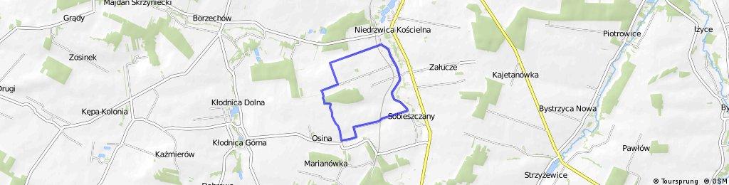 szlak (niebieski) po południowej część Gminy Niedrzwica Duża