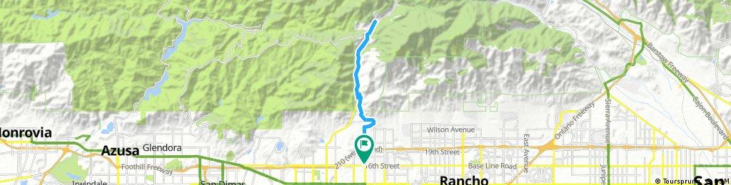 Mount Baldy Run