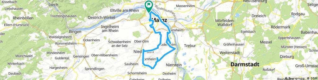 Lange Radrunde durch Mainz