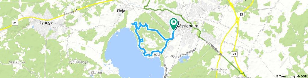Forest road and singletrack Hässleholm