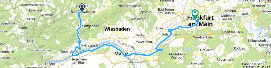 Rheingau to Frankfurt