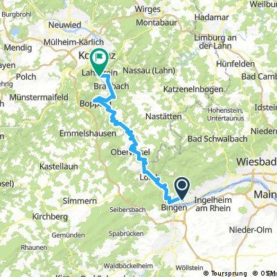 Rheinsteig von Rüdesheim nach Lahnstein