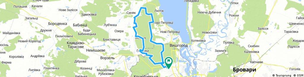 Гута Межигорская - ДОТ 555