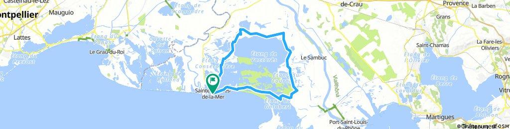 Lengthy bike tour through Camargue