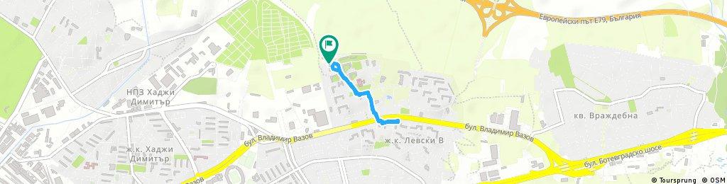 Brief ride through Sofia