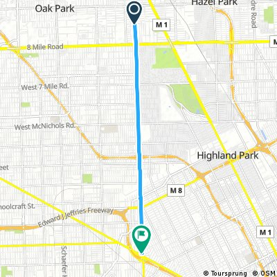 Short ride from Ferndale to Detroit