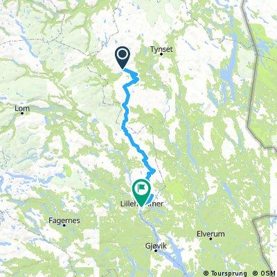 Bikepacking Alvdal Vestfjell - Rondane trail - into Lillehammer