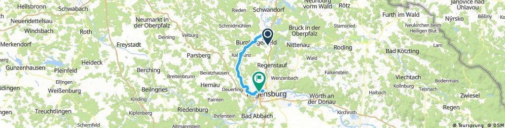 2017-05-30_17335949_maxhuette-haishof-bhf-regensburg-azur-camping-naabtalradweg_export.gpx