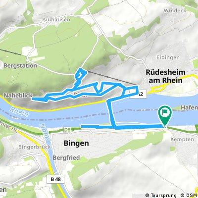 Von Bingen am Rhein nach Rüdisheim und zum Niederwald-Denkmal Germania