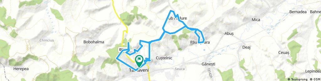 Maratonul Tarnavei 2017