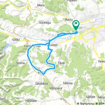 Cluj,Grigorescu to Vlaha and back
