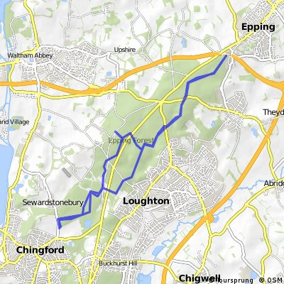 Epping forest ride