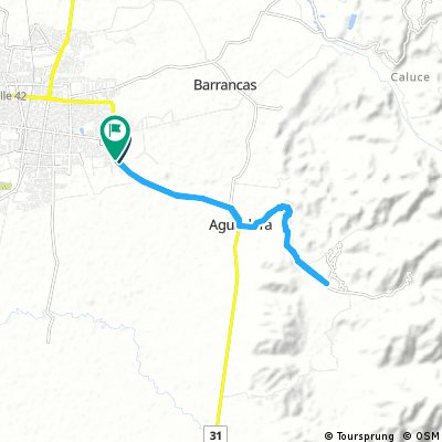 Palmira- La Buitrera