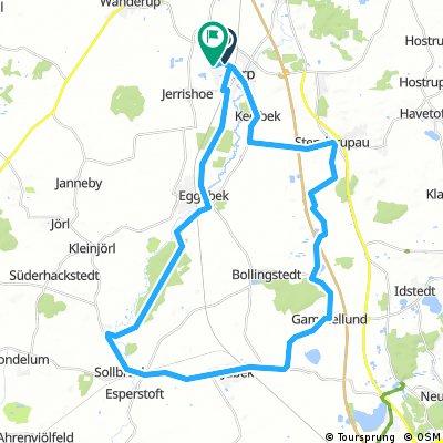 Tarp Runde 41 Km