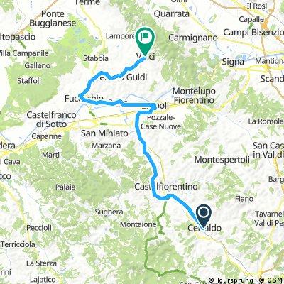 Escursione 2 Certaldo - Vinci km 55,4