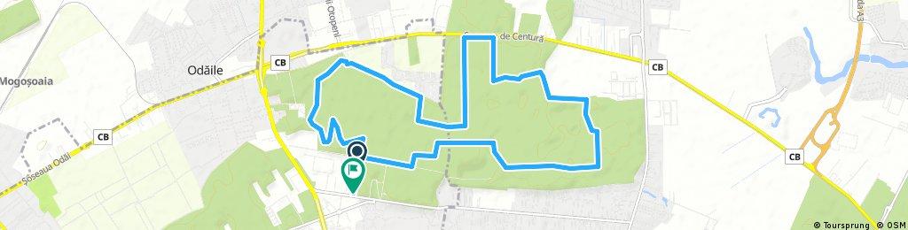 Baneasa 16 km 1:18