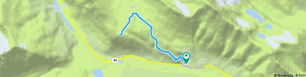 Wilcox Pass Trail 9. September, 10:18