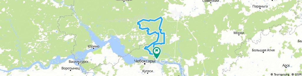 ультра-марафон Большая Кокшага