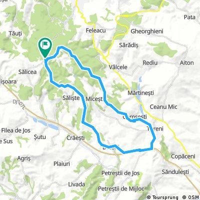 Salicea - Tureni - Deleni