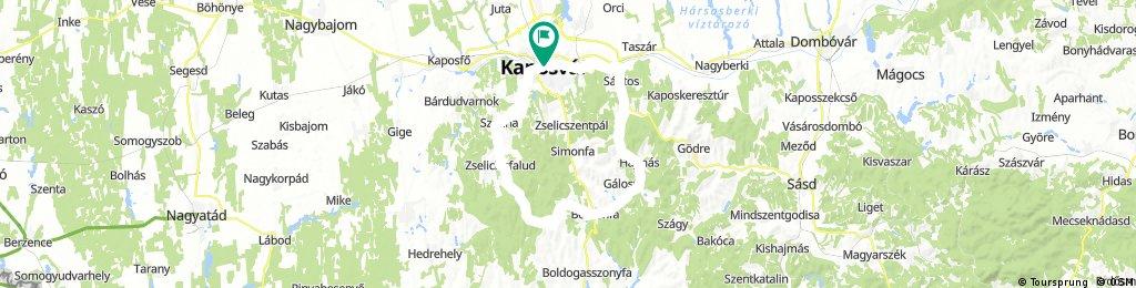 Zselici kör, Kaposvár-Kaposvár