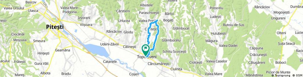 Topoloveni tour 20 km