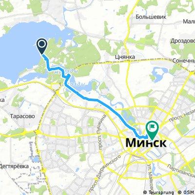 Возвращение с Минского моря