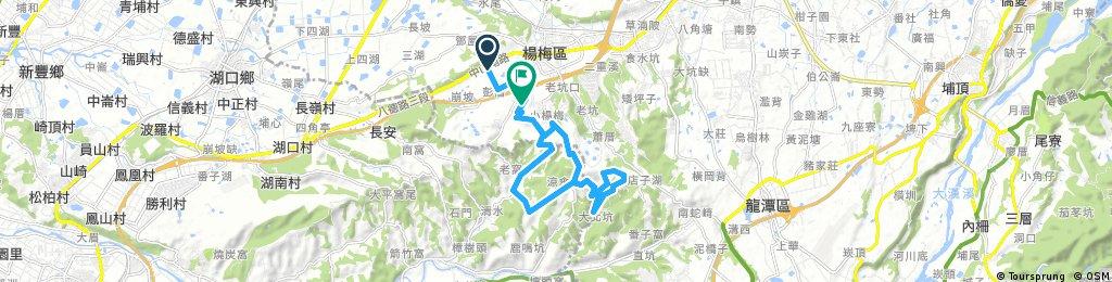 yangmei tea ride