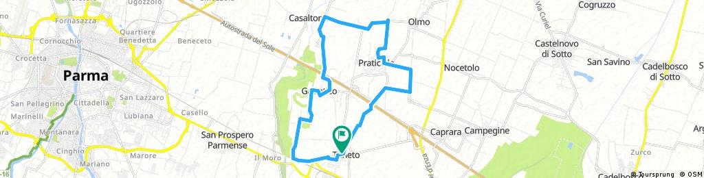 Taneto Half Marathon ring