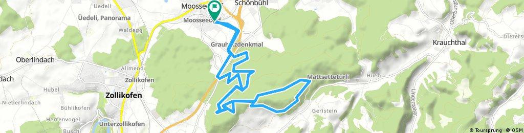 Moosseedorg-Schwarzkopf